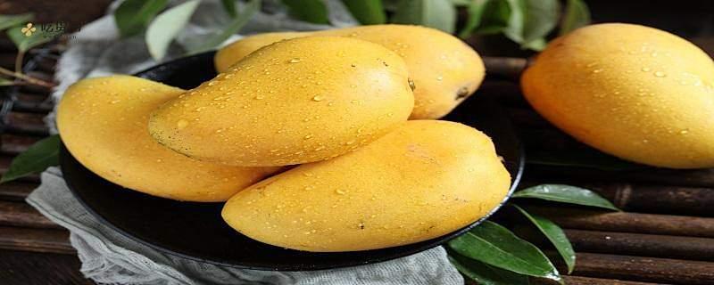 青芒一次吃是多少比较好,芒果吃多了会怎么样缩略图
