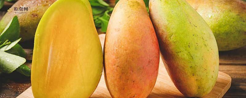 芒果一次吃多少合适 芒果吃多了会怎么样缩略图