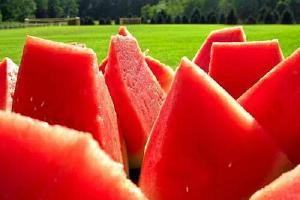 一岁小孩能吃西瓜吗,一岁的宝宝可以吃西瓜吗,西瓜一岁儿童能吃吗缩略图