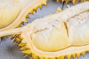 榴莲和海产品能另外吃吗,吃榴莲以后多长时间吃海产品缩略图