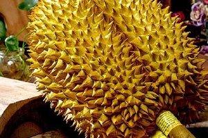 榴莲有乙醇味是否坏掉,榴莲要开裂才能吃吗缩略图