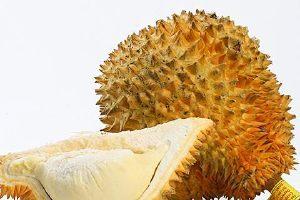 榴莲如何吃,榴莲核能吃吗缩略图