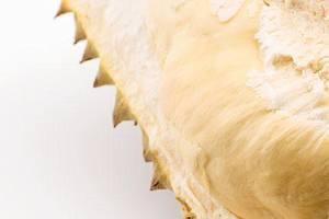 榴莲和牛乳一起吃会中毒了吗,榴莲和牛乳能够一起吃吗缩略图