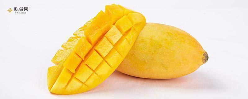 青芒不可以和什么一起吃呢,喝醉了还能吃芒果吗缩略图