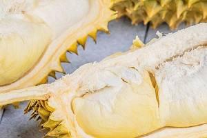 榴莲果能够和橘子一起吃吗,榴莲果不可以和什么一起吃缩略图