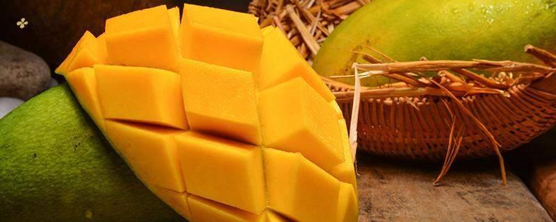 女人吃芒果的好处和弊端,青芒一天吃好多个为宜插图