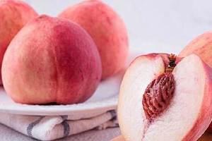 桃子和毛桃的差别,普遍的桃子种类有什么缩略图