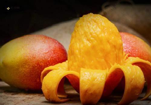 芒果和牛奶能一起吃吗,吃完青芒能够喝纯牛奶吗插图