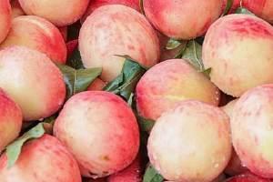 桃子和什么打汁好吃,桃子打汁不空气氧化的小技巧缩略图
