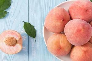 桃子酒用哪种桃子,桃子酒要多长时间才可以搞好缩略图