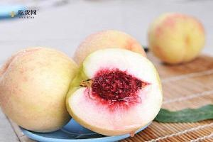 夏季吃桃子有哪些好处呢,夏季吃桃子好么,夏季吃桃子的益处缩略图