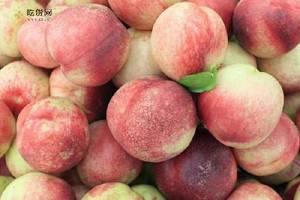 桃子和什么一起吃好 如何选择桃子缩略图