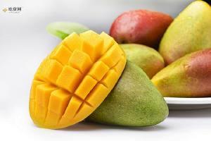 感冒咳痰能够吃芒果吗,咳嗽吃什么好缩略图