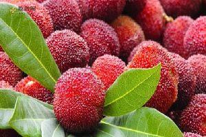 杨梅和大樱桃能够另外吃吗,杨梅和大樱桃一起吃好么缩略图