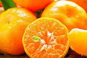 橘子能够放电冰箱里储存吗,  橘子放电冰箱可放多长时间缩略图
