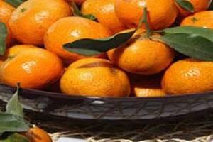 砂糖橘容易上火吗,吃是多少砂糖橘不容易容易上火缩略图