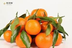 橘子能多吃吗,橘子能够多吃吗缩略图