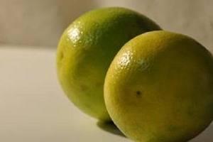 橘子合适什么人吃,橘子每日吃是多少适合缩略图