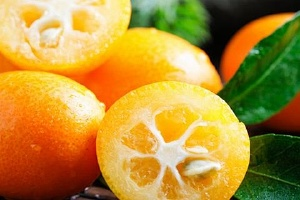 金桔比普通橘子糖分高吗,血糖高的人可以吃小金桔吗缩略图