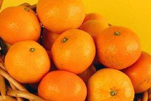 橘子能够放冰箱冷藏吗,橘子放电冰箱能储存多长时间缩略图