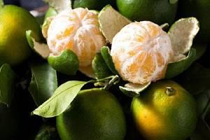 橘子减肥瘦身好么,橘子如何吃能减肥瘦身缩略图