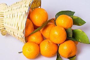 吃橘子头昏是什么原因,吃橘子头晕怎么办缩略图