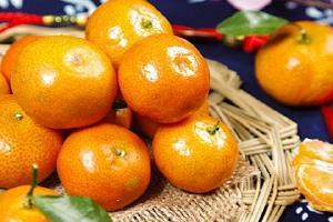 沃柑是橘子还是橙子,沃柑和橙子哪个VC高缩略图