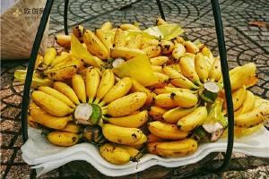 芭蕉和香蕉的差别,芭蕉不可以与什么同吃缩略图