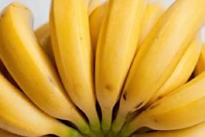 香蕉每日吃多少个适合,香蕉什么人不宜吃缩略图
