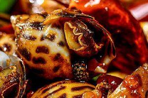 海螺和葡萄能一起吃吗,海螺哪些人不能吃吗缩略图