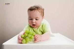 宝宝吃葡萄好吗,宝宝吃葡萄有什么好处,宝宝吃葡萄的好处缩略图