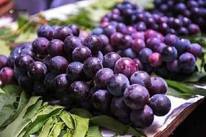 葡萄不洗剥皮能吃,葡萄皮有什么营养缩略图