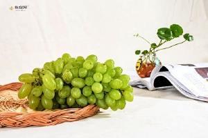 孕妇吃无籽葡萄好吗,无籽葡萄对身体有害吗缩略图