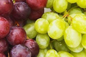 月经期间能吃葡萄吗,月经期间可以吃葡萄吗,经期能吃葡萄吗缩略图