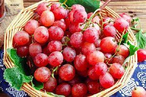 吃葡萄可以减肥吗 葡萄减肥法怎么吃缩略图