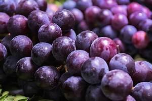 葡萄不能和什么一起吃,减肥期间能吃葡萄吗缩略图