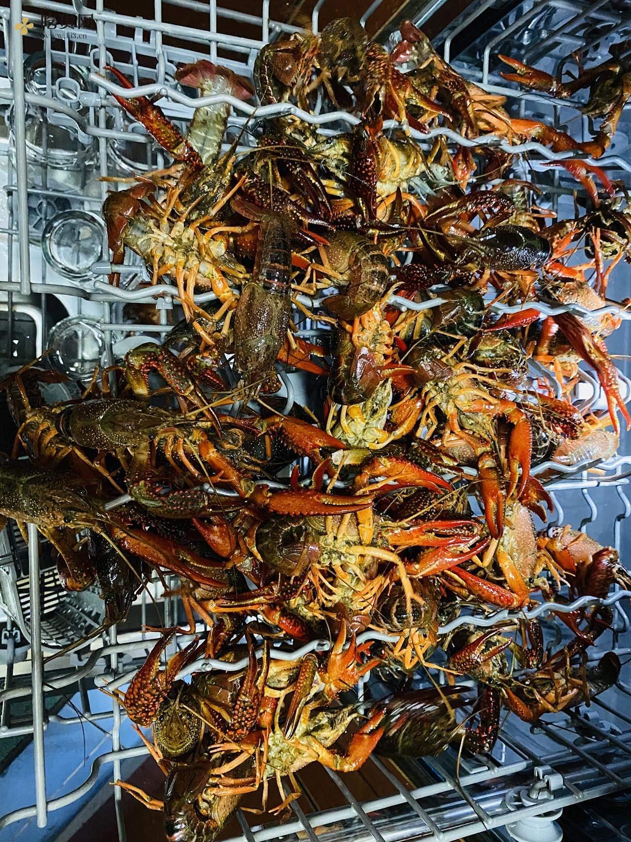 让你一学就会的吮指麻辣小龙虾的做法 步骤1