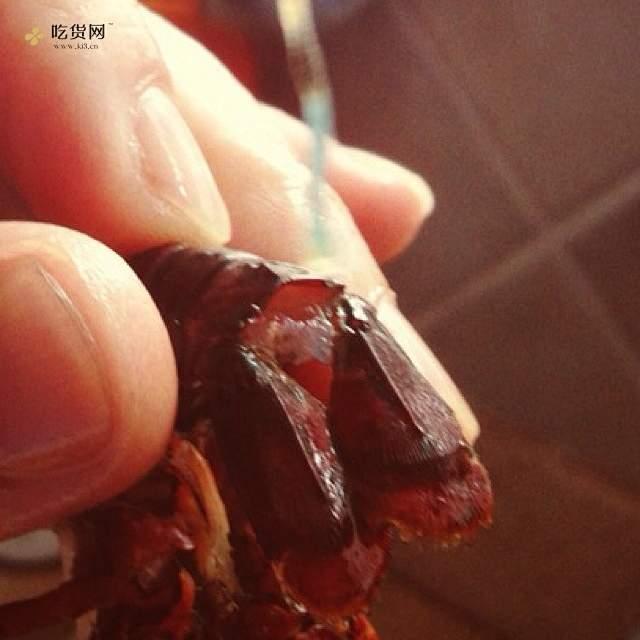 舌尖上的小龙虾(蒜香和麻辣小龙虾改良版)的做法 步骤4