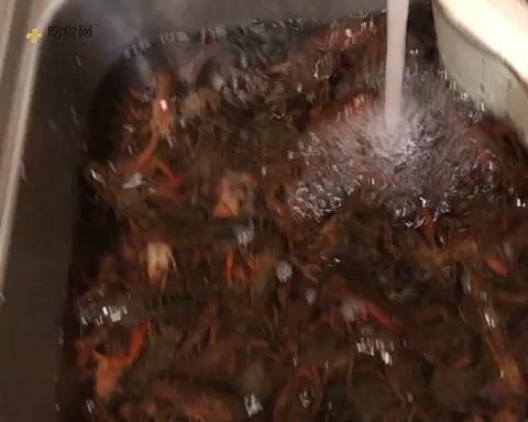 超简单懒人麻辣小龙虾的做法 步骤2
