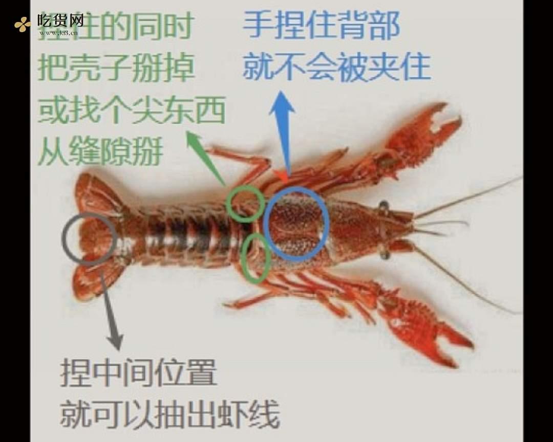零失误 麻辣小龙虾,没做过的一看就会的做法 步骤4