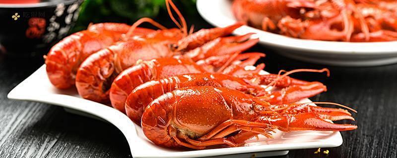 夜里吃龙虾是否会发胖,吃了龙虾吃什么减肥缩略图