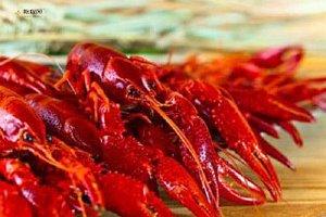 龙虾去世了能吃吗,龙虾去世了还能吃吗,死虾可以吃吗缩略图
