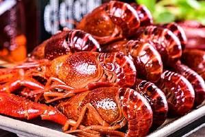 小虎虾开背好或是不开背好,如何给虾开背缩略图