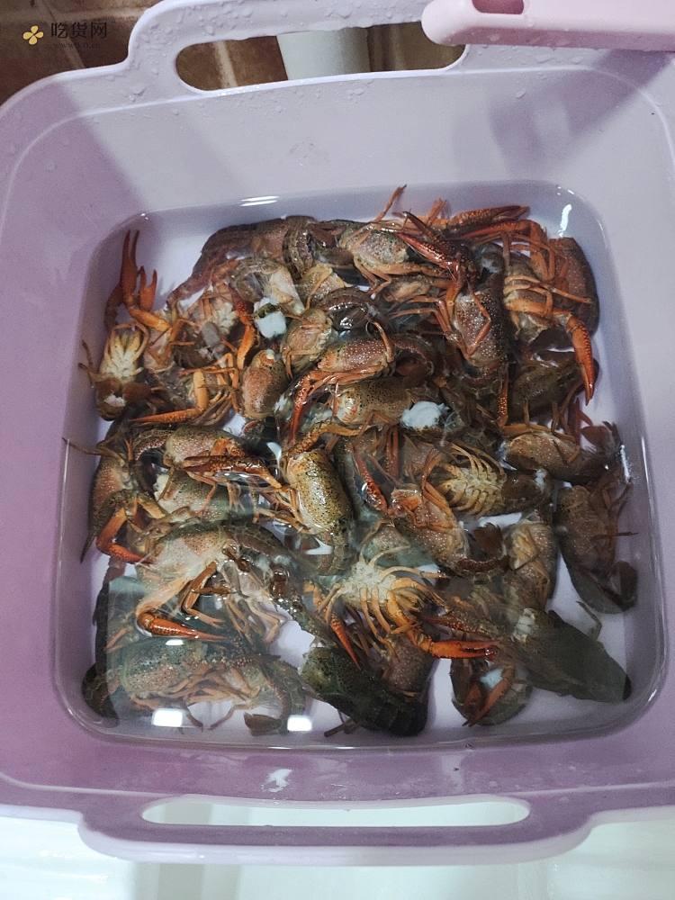 光盘麻辣小龙虾的做法 步骤2