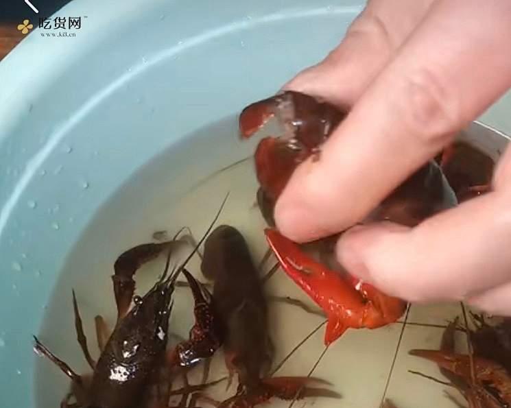麻辣小龙虾🦞蒜蓉小龙虾🦞双拼的做法 步骤7