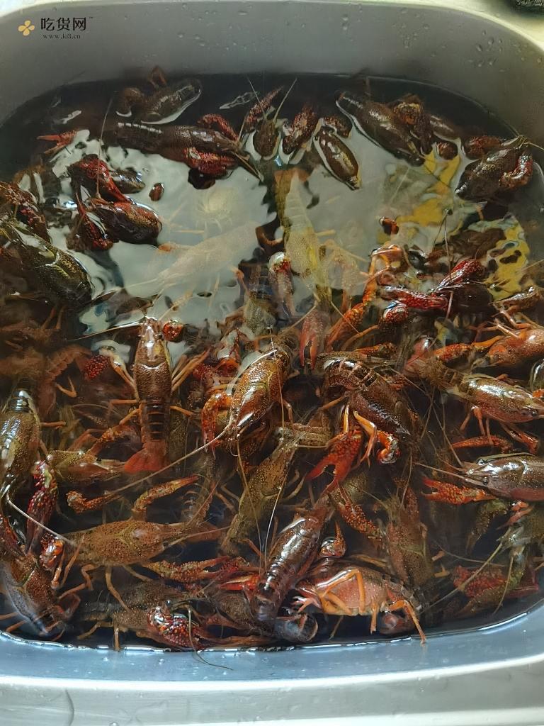 麻辣小龙虾(简单美味版)的做法 步骤1