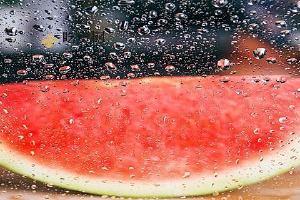 西瓜如何挑才知道是甜的,崔熟的西瓜是哪些的缩略图