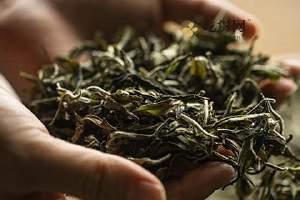 发霉的茶叶可以喝吗,怎么判断茶叶是否发霉缩略图