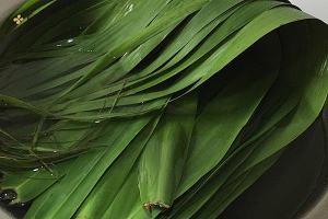 煮粽子叶的做法步骤图,煮粽子叶怎么做好吃缩略图