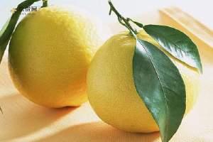 柚子与什么食物搭配 柚子的人群宜忌缩略图